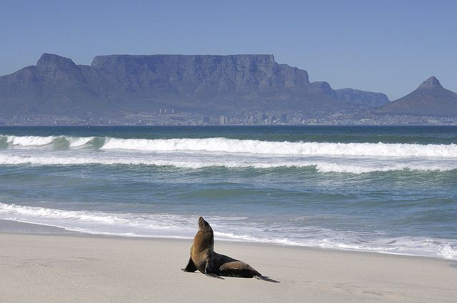 Milnerton and Blouberg – Cape Town's Hidden Spots
