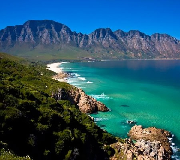 Cape Town Tours Winelands And Peninsula Tours Parker